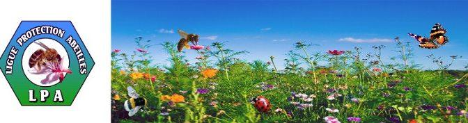 Préservation de la Biodiversité : Unissons-nous à la Ligue de Protection des Abeilles
